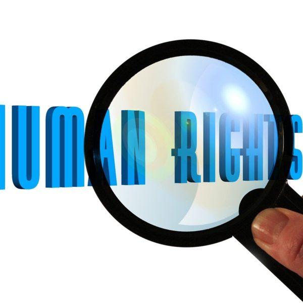 """""""2020: Die Bedeutung der Menschenrechte in einem herausfordernden Jahr"""" – Spannender Zoom-Talk!"""