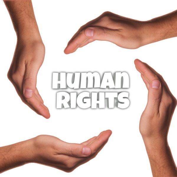 """""""2020: Die Bedeutung der Menschenrechte in einem herausfordernden Jahr"""" – Spannender Zoom-Talk mit Experte Manfred Nowak!"""